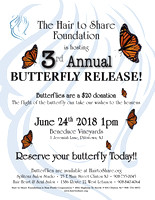 H2S Butterfly 2018 (O)